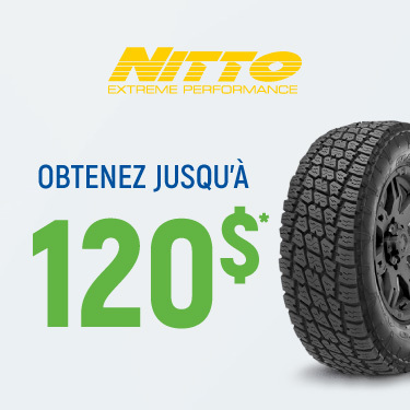 PROMOTION PRINTEMPS  2020 NITTO